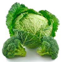 BFeNewsletter_200x194_Broccoli